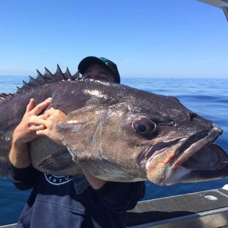 Doubtless Bay Charters - Fishing Charter Northland - Extended trips